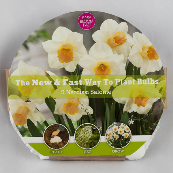 Salome Daffodil Easy Bloom Pad