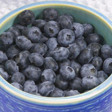 Sunshine Blue Blueberry