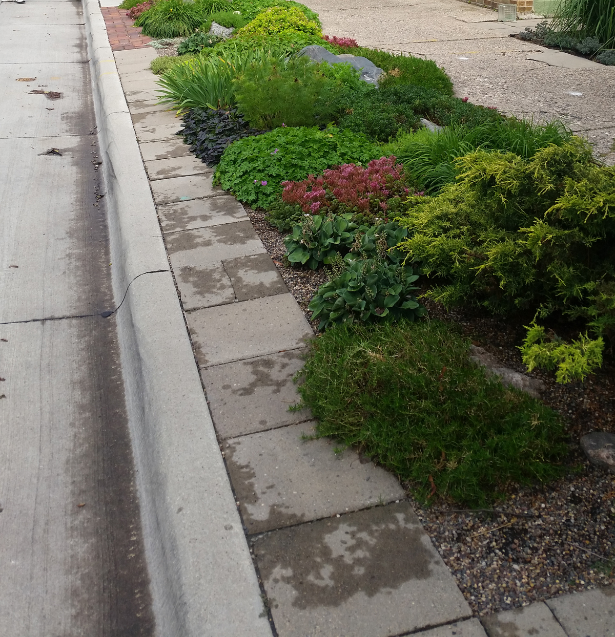 Hellstrip Sidewalk Landscaping